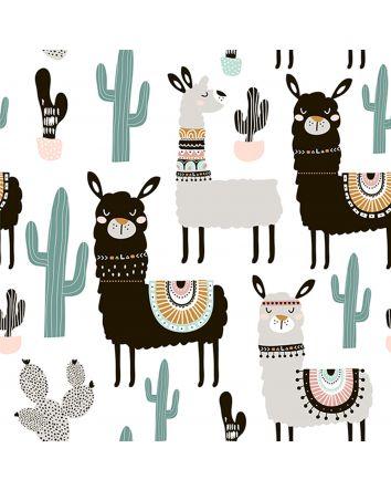 Cactus Llama Canvas Print 60x60cm