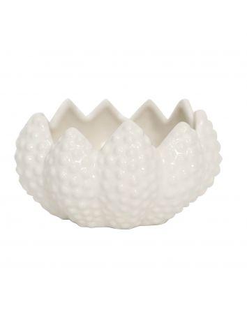 White Cactus Bowl
